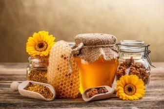 Still life with honey, honeycomb, pollen and propolis